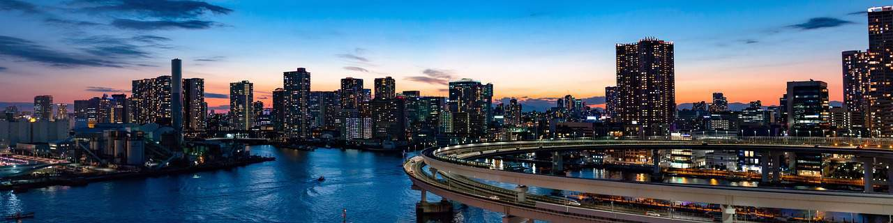 View overlooking Tokyo and Rainbow Bridge